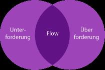 flow konzept